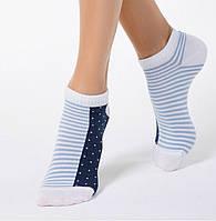 Носки демисезонные хлопок укороченные Житомир размер 23-25(36-40)
