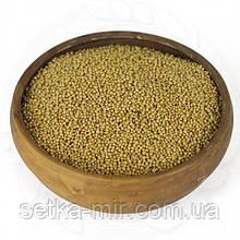 Горчица белая 0,25 кг без ГМО
