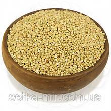 Гречка зеленая органическая 0,25 кг  без ГМО
