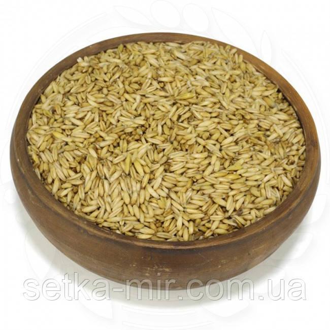 Овес голозерний органічний 0,25 кг  без ГМО