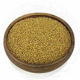 Пажитник (фенугрек) натуральный 1кг. без ГМО, фото 2