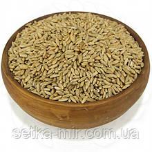 Жито органічна 0,25 кг  без ГМО