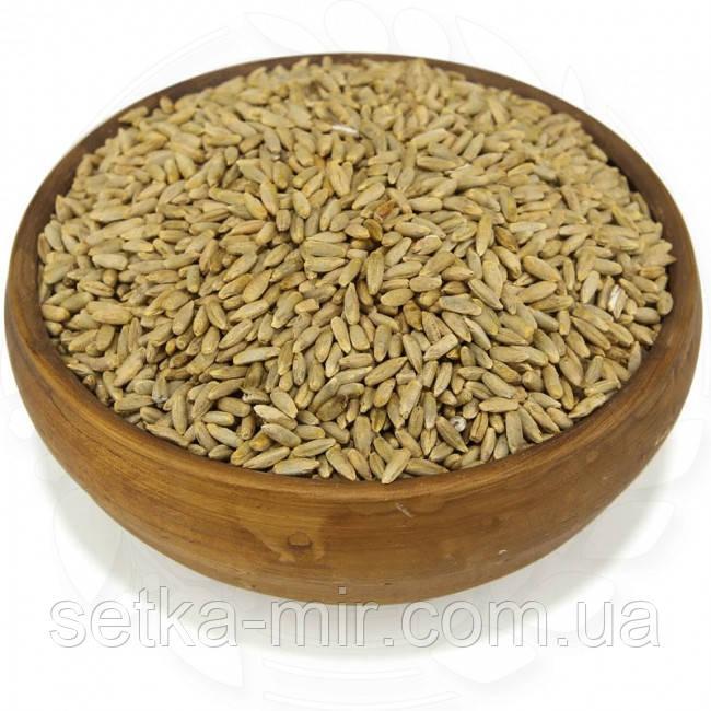 Рожь органическая 20 кг. сертифицированные без ГМО