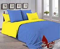 Комплект постельного белья P-4037(0643)