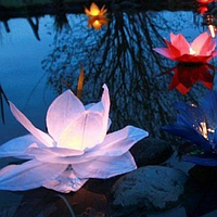 Топ! Оригинальный Водный фонарик Лилия лотос на Свадьбу