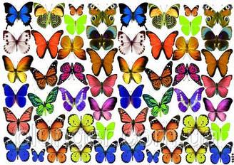Вафельна картинка для кондитерских виробів, топерів, пряників, капкейків Метелики (листок А4) 5
