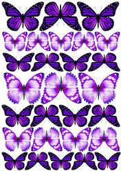 Вафельна картинка для кондитерских виробів, топерів, пряників, капкейків Метелики (листок А4) 6