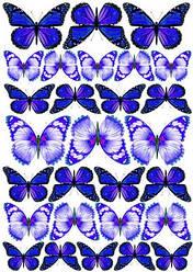 Вафельна картинка для кондитерских виробів, топперів, пряників, капкейків Метелики (лист А4) 7