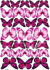 Вафельна картинка для кондитерских виробів, топперів, пряників, капкейків Метелики (лист А4) 8
