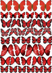 Вафельна картинка для кондитерских виробів, топерів, пряників, капкейків Метелики (листок А4) 16