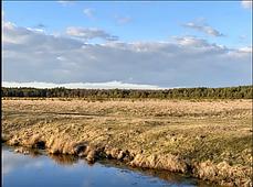 Продається земельна ділянка в с. Блищиводи, фото 3