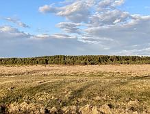 Продається земельна ділянка в с. Блищиводи, фото 2