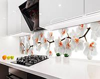 Кухонные фартуки Самоклеющаяся пленка (600/650*2500 мм)
