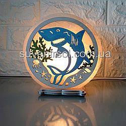 Соляной светильник круглый Акула цветной