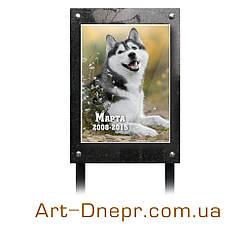 Табличка на могилу собаке. Гранит+керамика на металлических ножках.