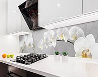 Кухонный фартук Ветка Белых Орхидей (наклейка виниловая, скинали для кухни, самоклеющаяся пленка) цветы, серый, 600*3000 мм