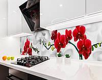 Кухонный фартук Ветка Красных Орхидей (наклейка виниловая, скинали для кухни, самоклеющаяся пленка) цветы серый, 600*3000 мм