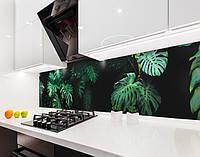 Кухонный фартук Листья Монстерры (наклейка виниловая, скинали для кухни, самоклеющаяся пленка) растения, зеленый, 600*3000 мм