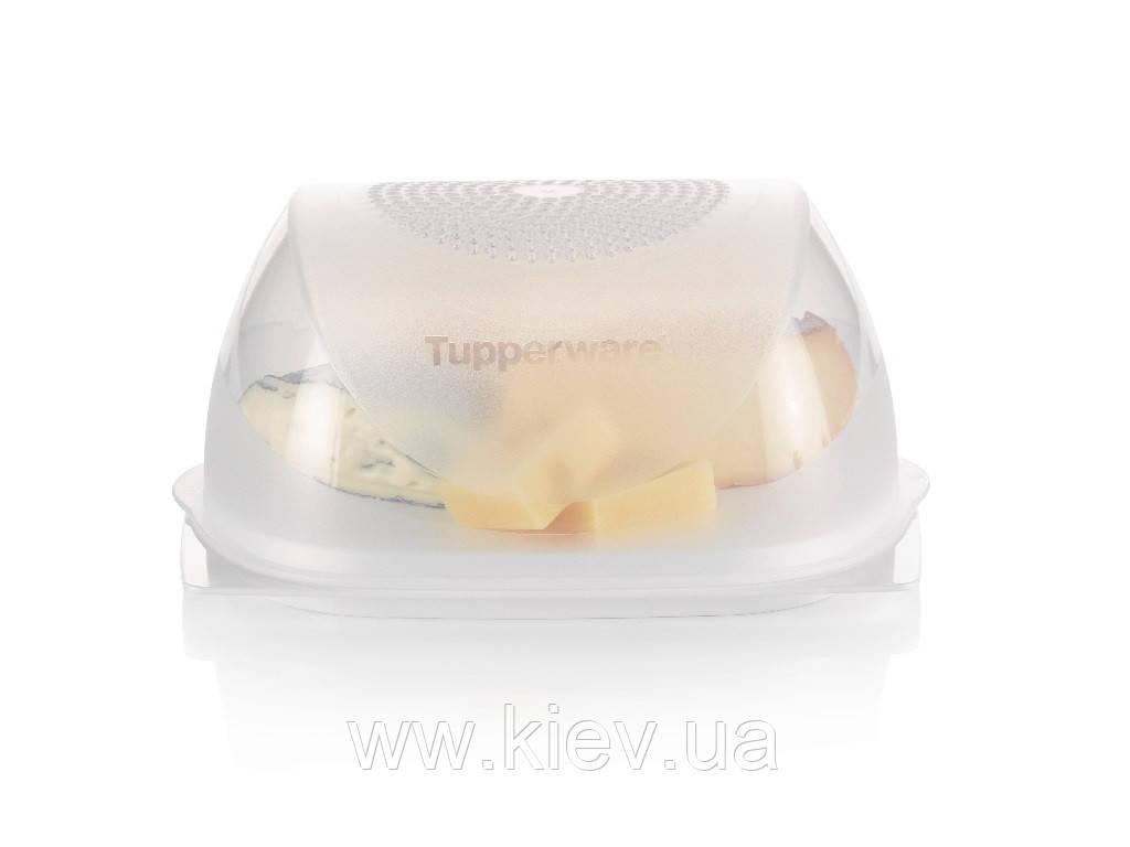 Умная сырница малая Tupperware