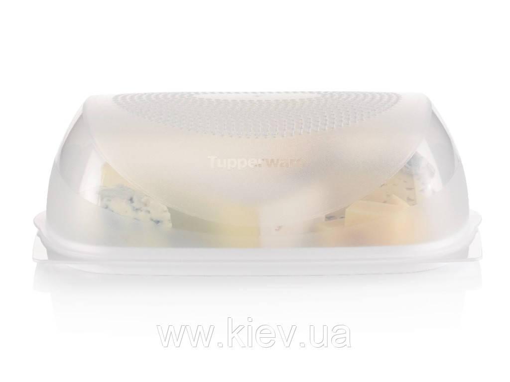 Умная сырница прямоугольная Tupperware