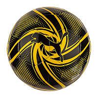 М'ячі BVB Future Flare Fan Ball 5