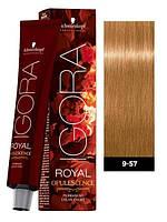 Краска для волос  9-57 Schwarzkopf Igora Royal блондин золотисто-медный 60 мл
