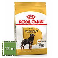 Сухой корм для взрослых собак породы ротвейлер в возрасте от 18 месяцев | Royal Canin Rottweiler Adult | 12 кг