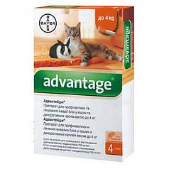 Краплі Bayer Advantage Адвантікс ® 40 від зараження блохами для котів і кошенят до 4 кг (4 піпетки*0.4 мл)