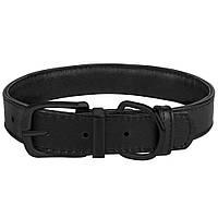 Ошейник для Собак Кожаный Premium с Металлической Фурнитурой Черный размеры 2XS - 2XL
