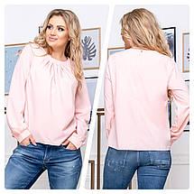 Блуза женская с длинным рукавом большого размера, пять цветов р.50,52,54,56 код 5174А, фото 3