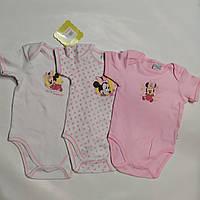 Набор боди для девочки короткий рукав  Минни Disney baby  р.9-12мес, фото 1