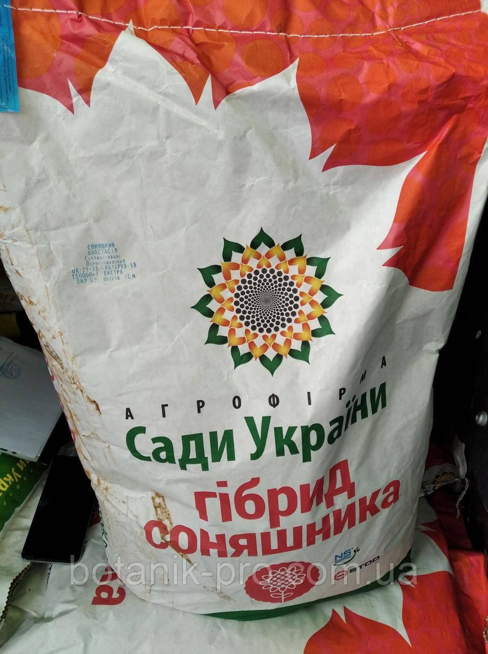 Семена подсолнечника Сады Украины Анастасия фракция стандарт
