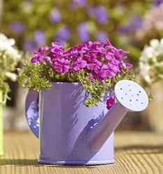 Аксессуары, и подвязки для цветов