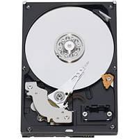 Жесткий диск SATA3 1Tb WD 64Mb Caviar Blue (WD10EZEX)