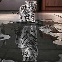 Готовая картина алмазная мозаика Кот и тигр  25*25 см на двп