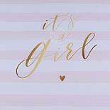 """Панелька из сатина размером 33*33 см """"Ít's a girl"""" на розовых полосках, фото 2"""