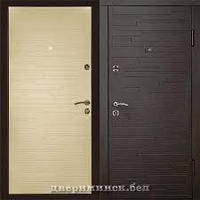 Входная дверь  ПО-66 Q Горизонт темный/горизонт белый
