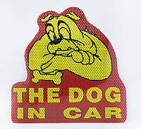 Наклейка собака в машине, на стекло