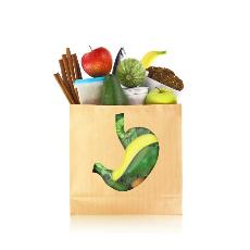 пищеварительная система и обмен веществ