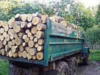 Дрова дубовые для дома