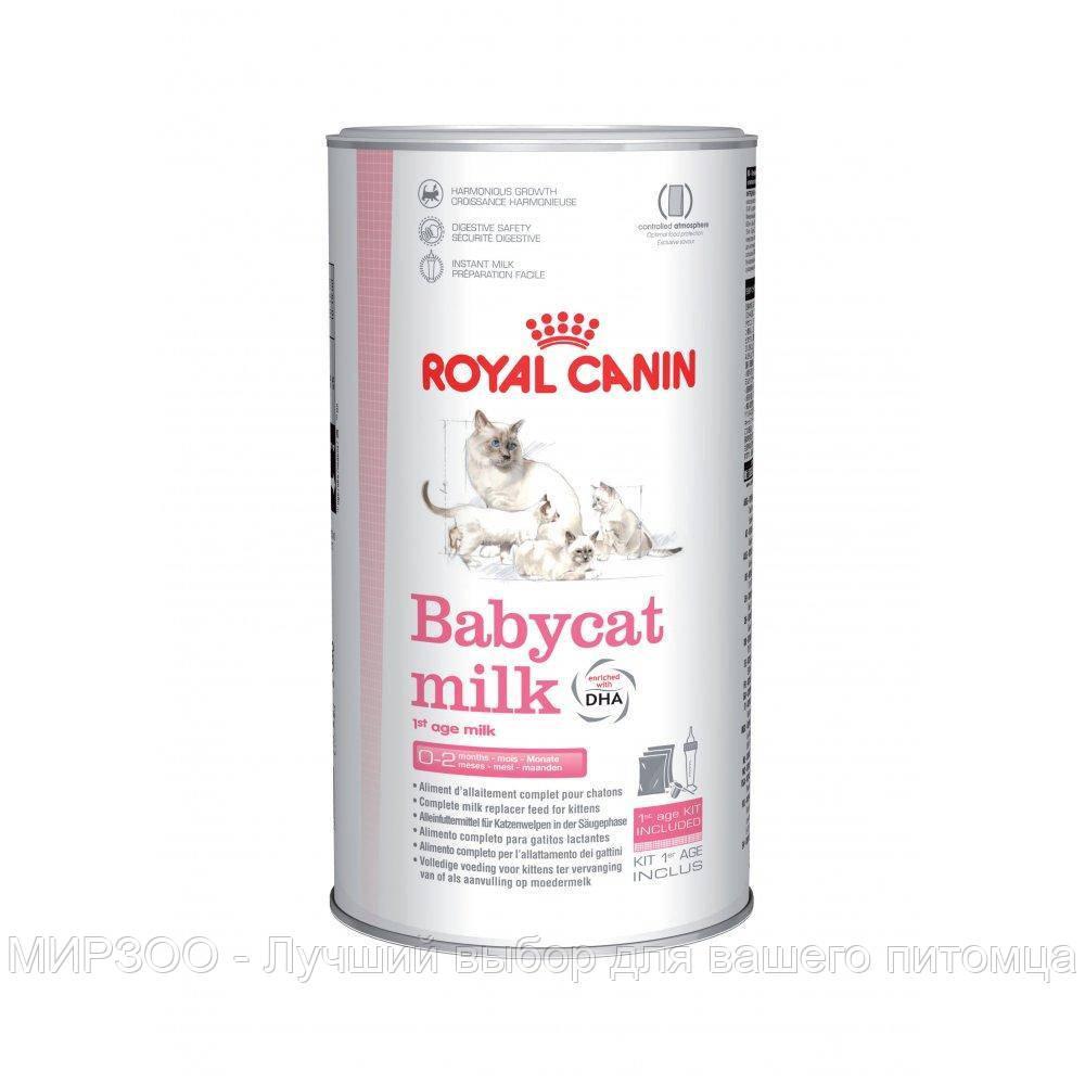 Заменитель молока Royal Canin Babycat Milk для котят 0,3 КГ