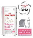 Заменитель молока Royal Canin Babycat Milk для котят 0,3 КГ, фото 2