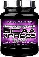 BCAA аминокислоты Scitec Nutrition BCAA Xpress (500 г)