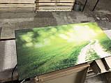 Керамическая панель обогрева с рисунком на выбор и терморегулятором 475 Вт ТМ Камин, фото 8