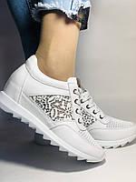Alpino. Женские кроссовки белые.Натуральная кожа. Размер  38.40 Турция. Vellena, фото 4