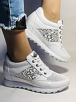 Alpino. Женские кроссовки белые.Натуральная кожа. Размер  38.40 Турция. Vellena, фото 2