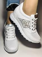 Alpino. Женские кроссовки белые.Натуральная кожа. Размер  38.40 Турция. Vellena, фото 5
