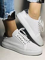 Стильные женские кеды-кроссовки на платформе.Турция. Натуральная кожа. Высокое качество 36.38.39.40  Vellena, фото 2