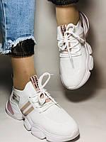 Lonza.Стильные женские кеды-кроссовки белые.Плотный текстиль. Размер  36.  Vellena, фото 8