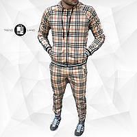 Мужской спортивный костюм в клетку с капюшоном+штаны Scot Beige Бежевый